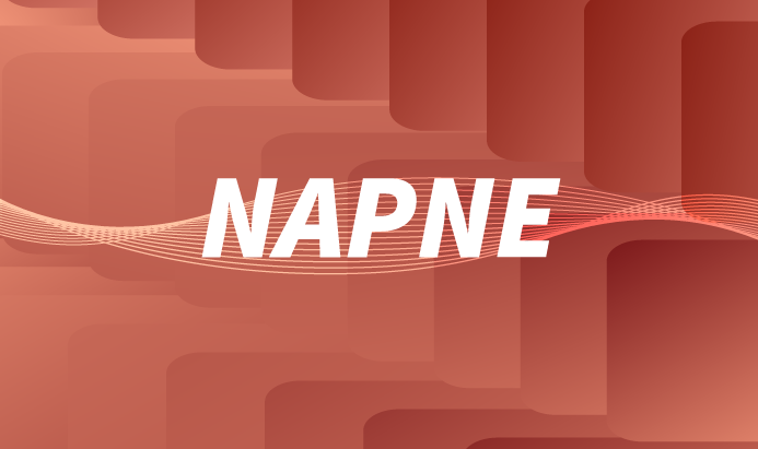 https://www.itapina.ifes.edu.br/index.php/napne
